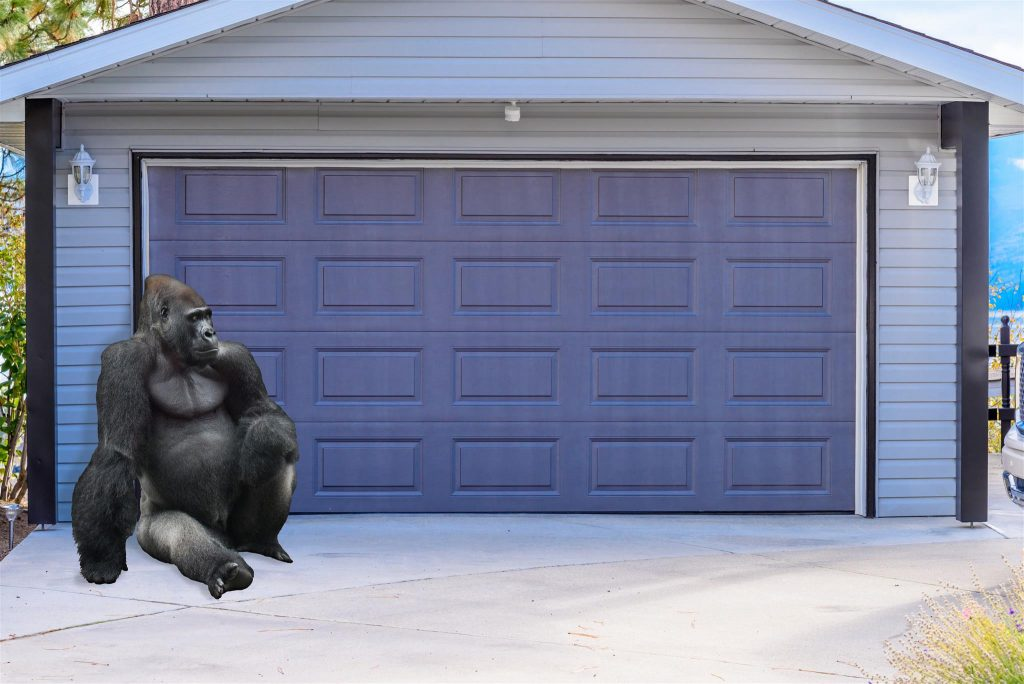 Nanaimo Garage Door Safety for Kids